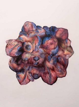 Blooming' 2016 | Rialta