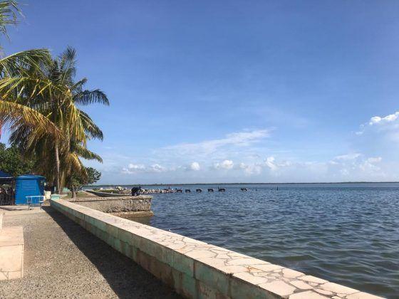 malecón de Puerto Padre 1 | Rialta