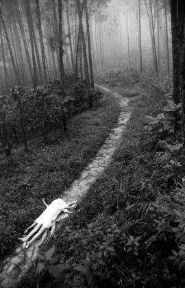 Juegos en el bosque 1989 | Rialta