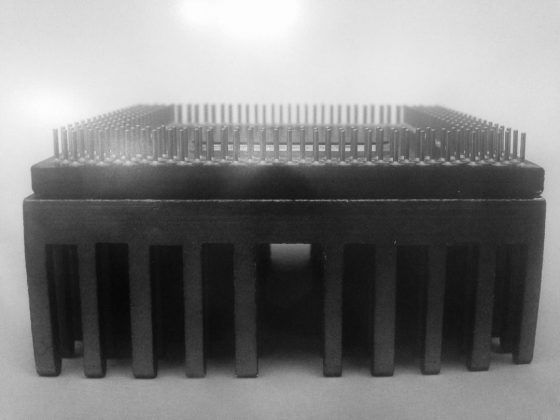 Partenón' Arián Irsula 2020 | Rialta