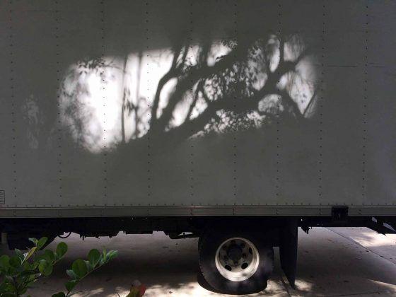 Cast on Wheelsʾ | Rialta