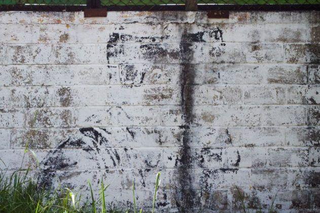Musgo del retratoʾ | Rialta