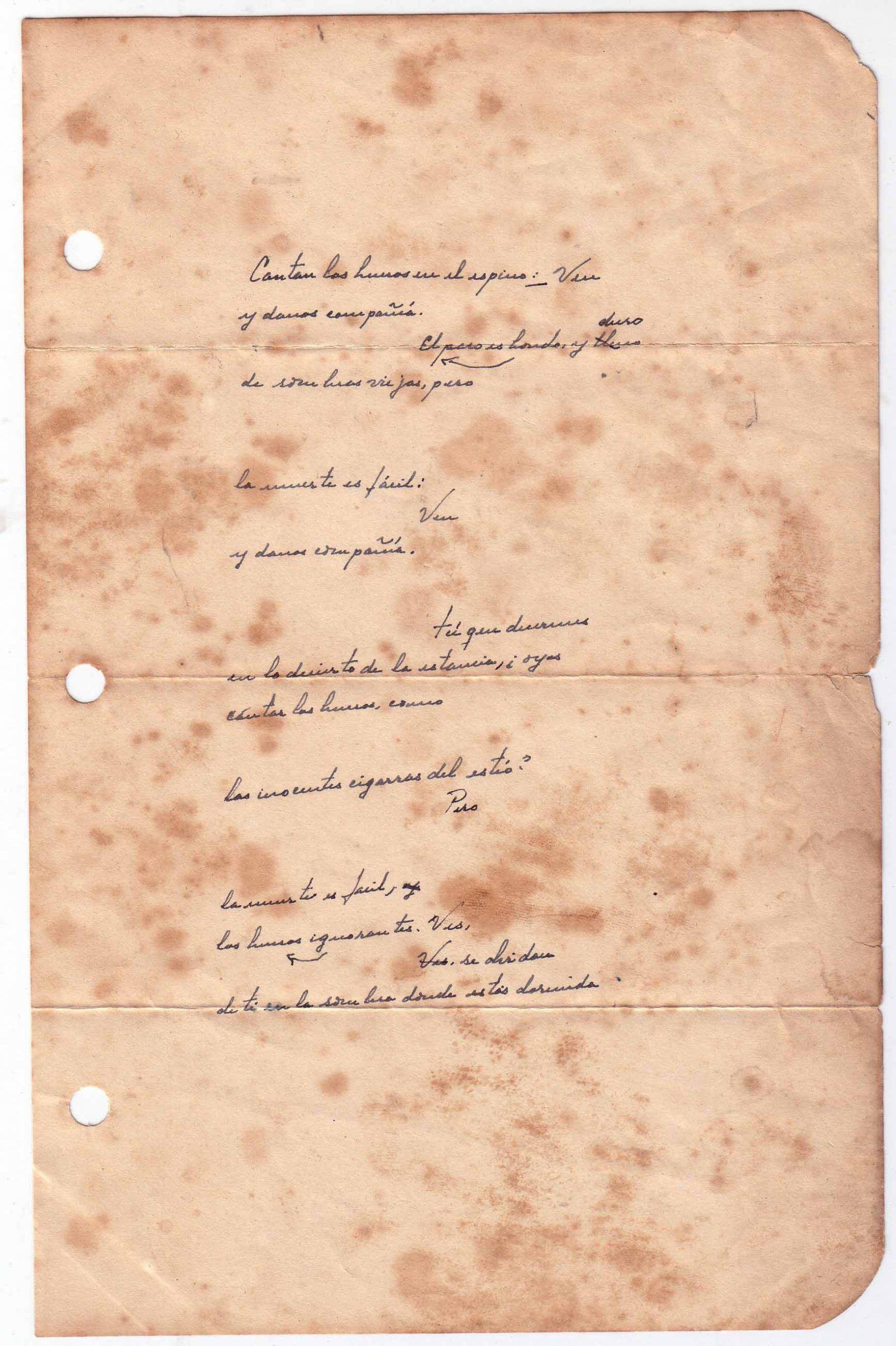 papa poema scaled | Rialta