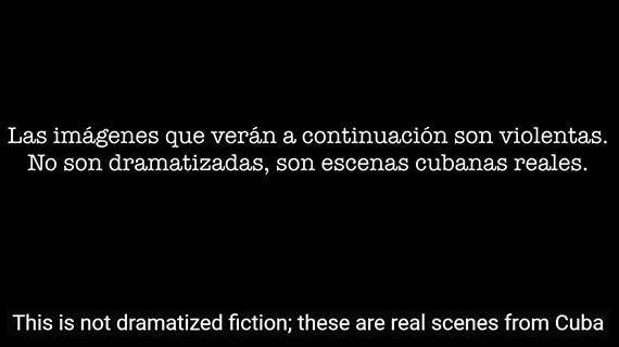 Gusano (documental)