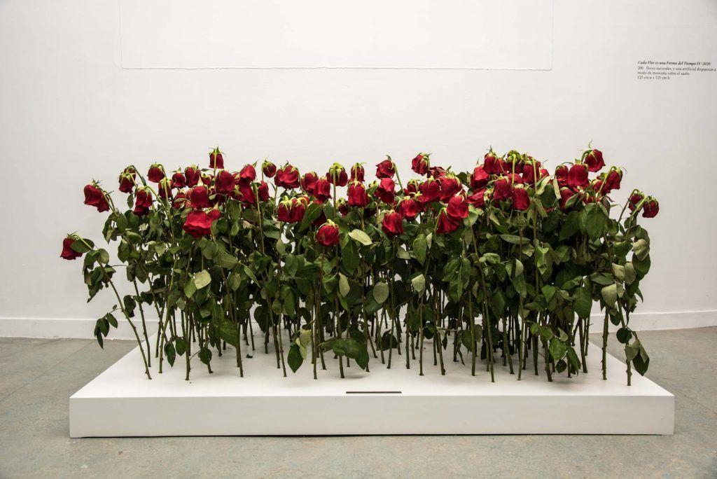 Cada Flor... Glenda León | Rialta
