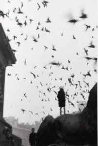 londres 1959 larrain | Rialta