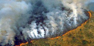 Incendios en la Amzonia brsilena 2020 FOTO EPA   Rialta
